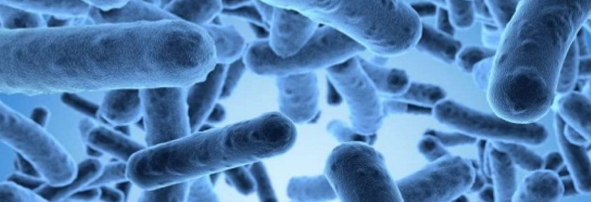 Antimicrobial finish on textiles