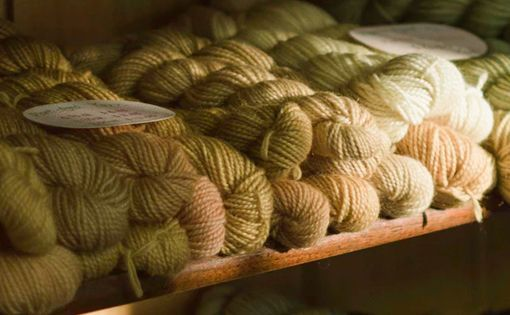 The Fiber Year 2008/09: A World Survey on Textile and Nonwovens Industry