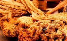 Indian Coir Industries