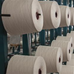 Top executives, Textile Industry