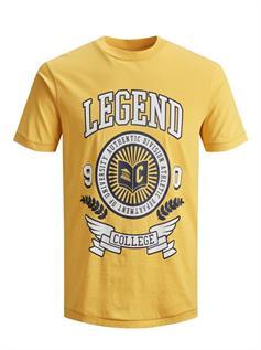 Men's Round Neck Printed T Shirt