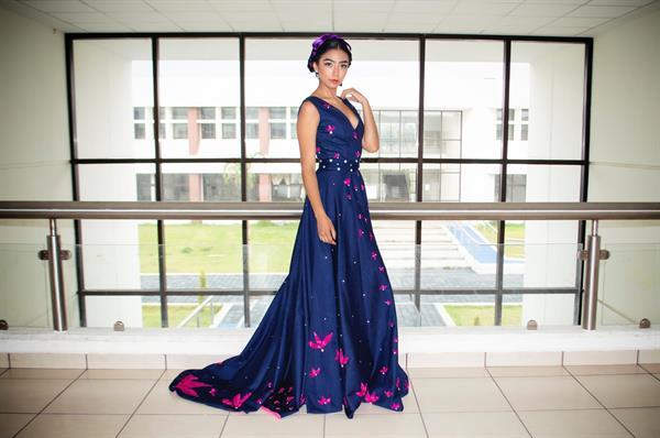 Women Ethnic Gown
