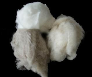 "Greige & Dyed, 1.5-3.5"", 18-32 micron, For yarn spinning & fabric felt"