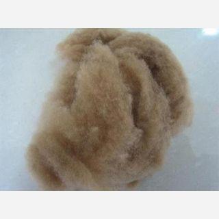 camel fibre