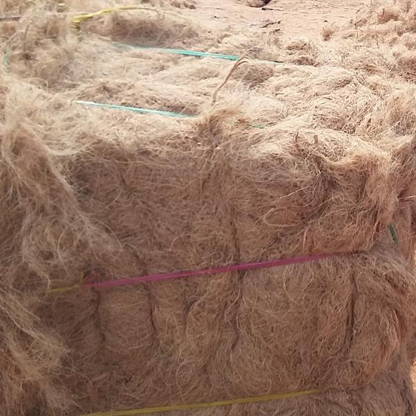 Coir / Coconut Fibre : Dyed,Greige, 6, 10, and 14 mm, -, For green