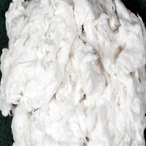 Cotton Comber Fiber