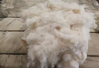 Recycle Cotton Fibre