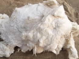 Bleached Clean Cotton Comber Noil