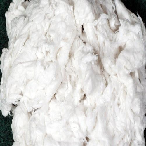 Cotton Comber Noil Fibre