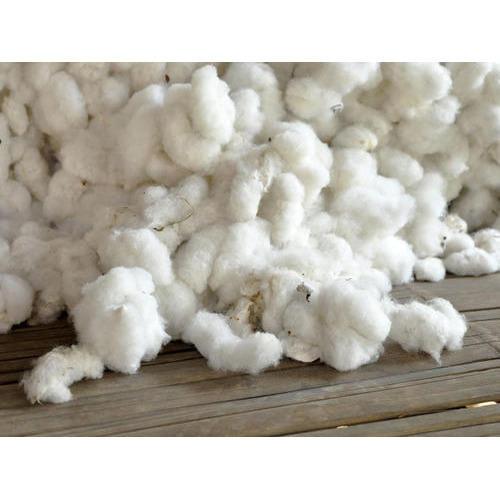 USA Raw Cotton Fibre