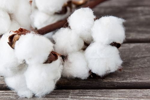 Greige Cotton Fibre