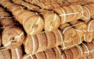 Coir Natural Fibre