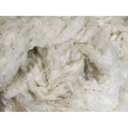 Organic Cotton Fibre