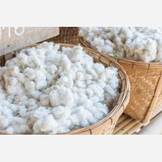 Virgin Cotton Fibre