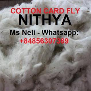 Cotton Natural Fibre