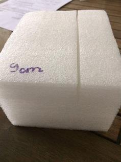 Foam Polybag