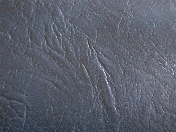 gray skin leather