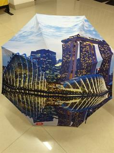 Printed Polyester Umbrella