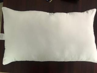 Waterproof Pillow