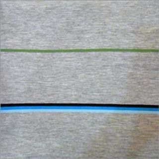190-300 gsm, 100% Polyester, 60% Polyester / 40% Viscose, 40% Polyester / 60% Cotton, 100% Viscose , Dyed, Weft & Wrap Knit