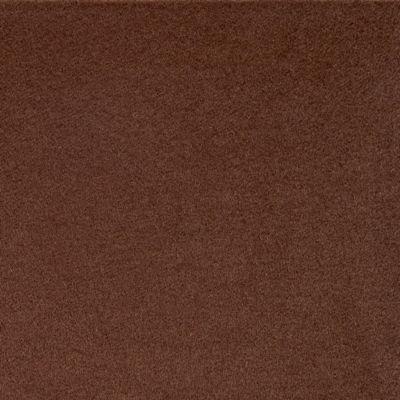 Plain Cashmere Fabric