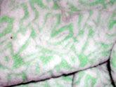 Jacquard Terry Fabric