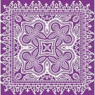 Voile Lace Fabric