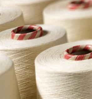 100% Cotton OE Yarn for Knitting Ne 31/1