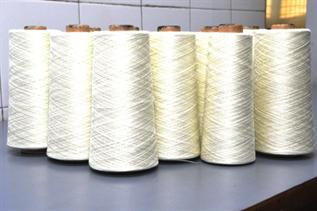 Greige, For carpet making, Ne 10/3, 12/3, 16/3, 100% Polyester