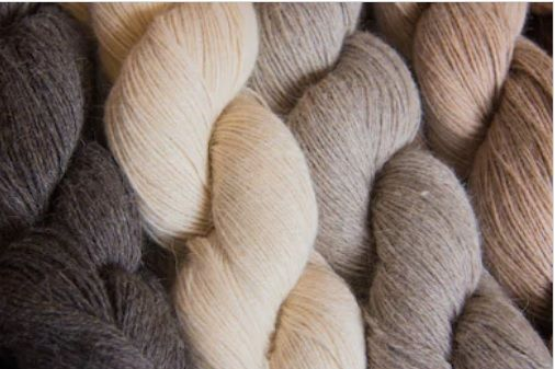New Zealand Wool Yarn