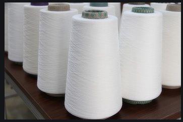 Carded Cotton Yarn