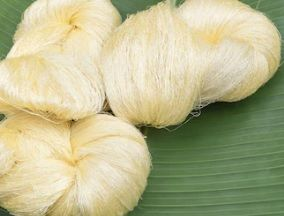 Banana Cotton Blend Yarn