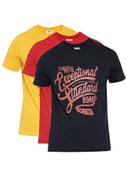 Men's Round Neck Cotton T-Shirt