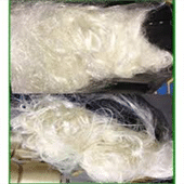 Cotton Roving Waste