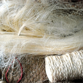Abaca Natural Fibre