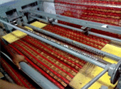 Weft Butta Cutting Machine