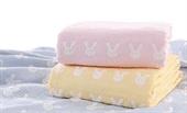 Cotton Woven Fabric