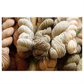 Organic cotton yarn Buyers - Importers, Distributer, Dealers
