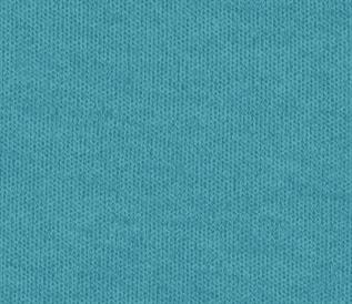 Interlock Fabric-21473