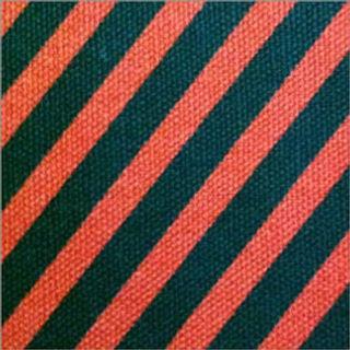 Duck fabric-498