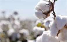 Cotton production outside of China to touch 19mn tons