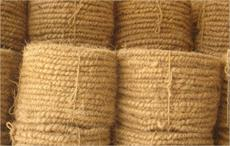 Coir Board to boost geo textiles usage and research