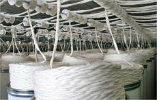Dixie Group to lease Royalty Carpet Mills yarn facility