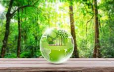 Trident wins CITI award of excellence for sustainability