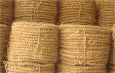 Coir geo-textile to fortify Kerala's Kuttiyadi canal
