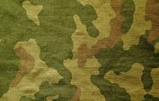 Fabrics for armed forces will be made in India: Minister