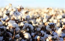 Cotton Australia to use findings of study in agriculture