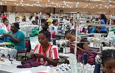 ILO launches programme in Ethiopia to promote decent work