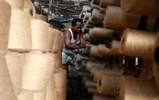 Biodegradable cellulose sheets from jute in Bangladesh