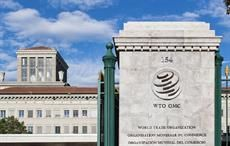 Do not dilute WTO's S&D provisions: 45 nations insist